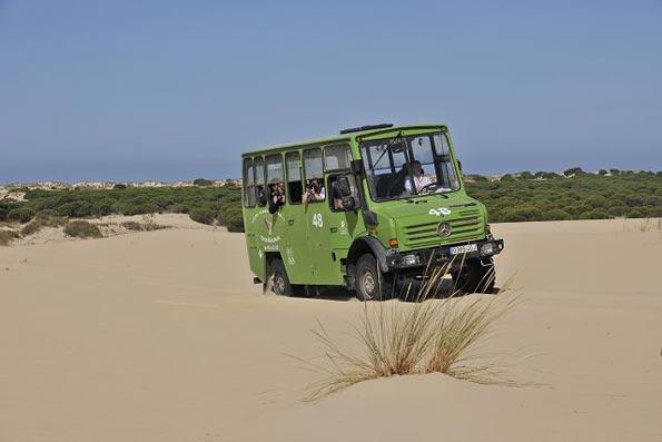 viaje fin de curso a Doñana