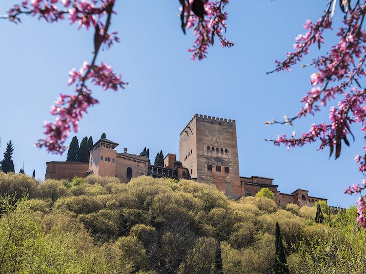 excursion escolar a la Alhambra